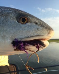 Low Country Fly Fishing